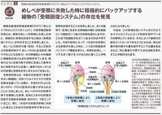 News Clip kasahara.jpg