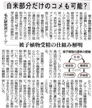 中日新聞.png